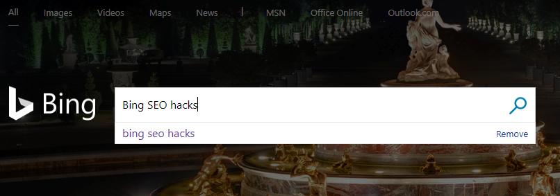 screenshot of bing seo hacks search in ms bing