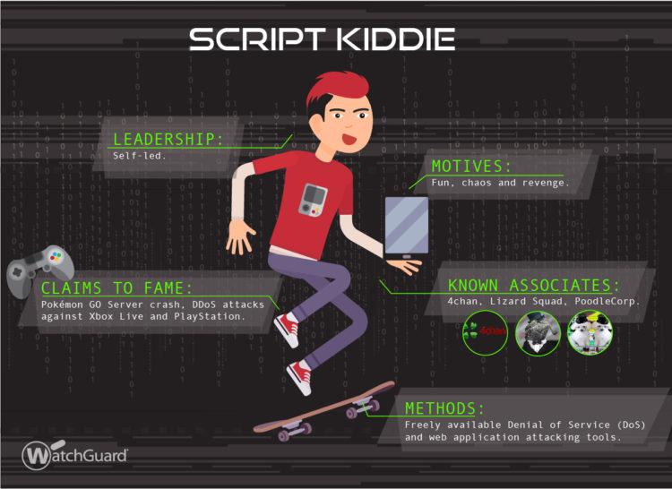 A script kiddie, according to  WatchGuard